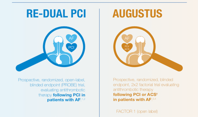 RE-DUAL VS AUGUSTUS Infographic