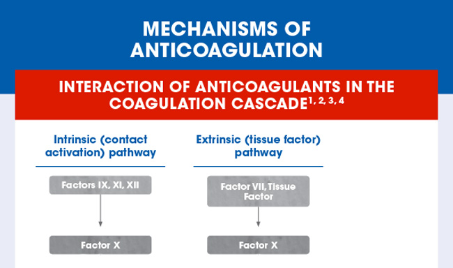 Mechanisms of anticoagulation